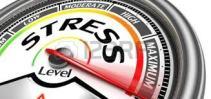 ZZ - Blog - Stress & Lists - STRESS GAUGE